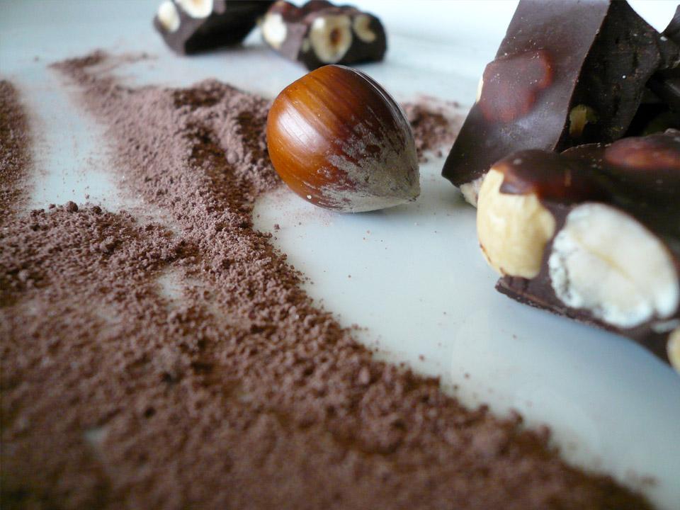 DAPZWD_dierenartsenpraktijk-zuidwest-drenthe_hond-chocolade-1