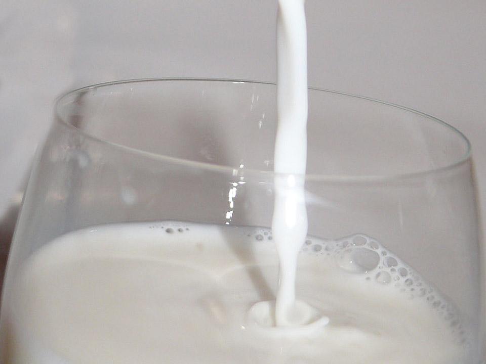 DAPZWD_dierenartsenpraktijk-meppel_content-koeienmelk