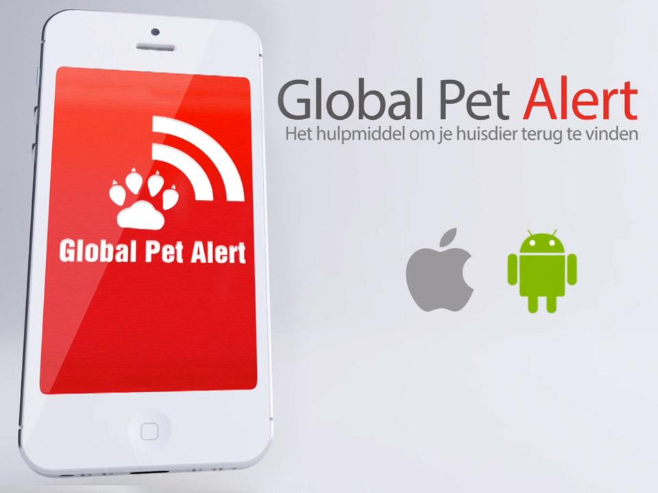 DAPZWD_dierenartsenpraktijk-zuidwest-drenthe_nieuws-global-pet-alert-2