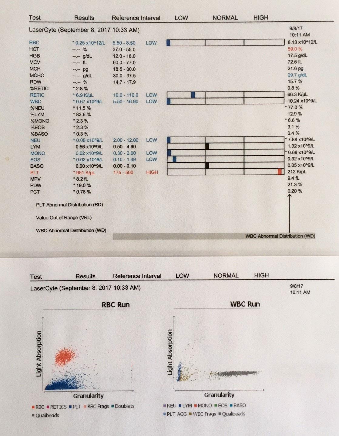 regeneratieve therapie onderzoek prp plasma dierenarts Meppel
