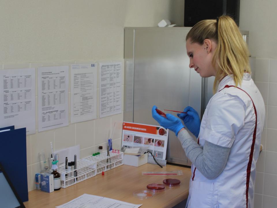 Bacteriologisch onderzoek DAPZWD Rijnie