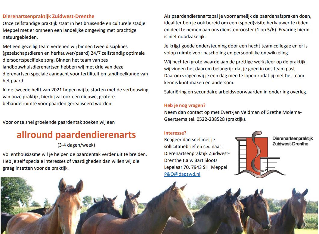 vacature paard DAPZWD2021